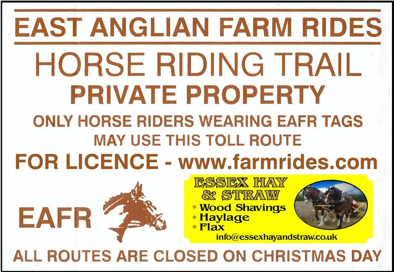 Farm Rides, Private Hacking, Horse Rides Organisation in Essex and Suffolk